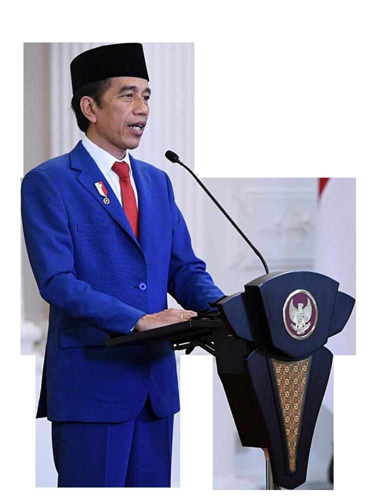 Jokowi Dodo